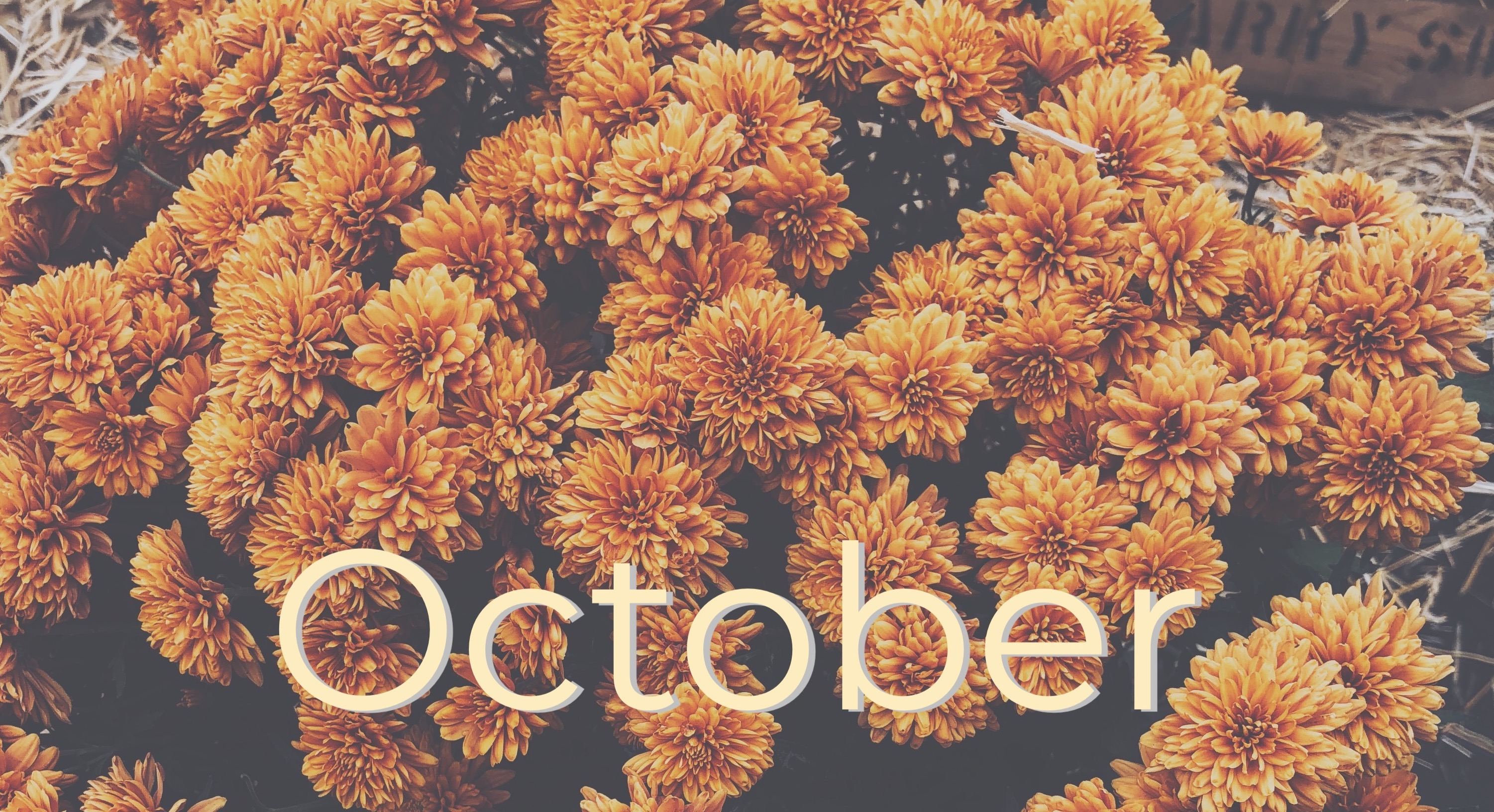 Flowers with the word October in print.