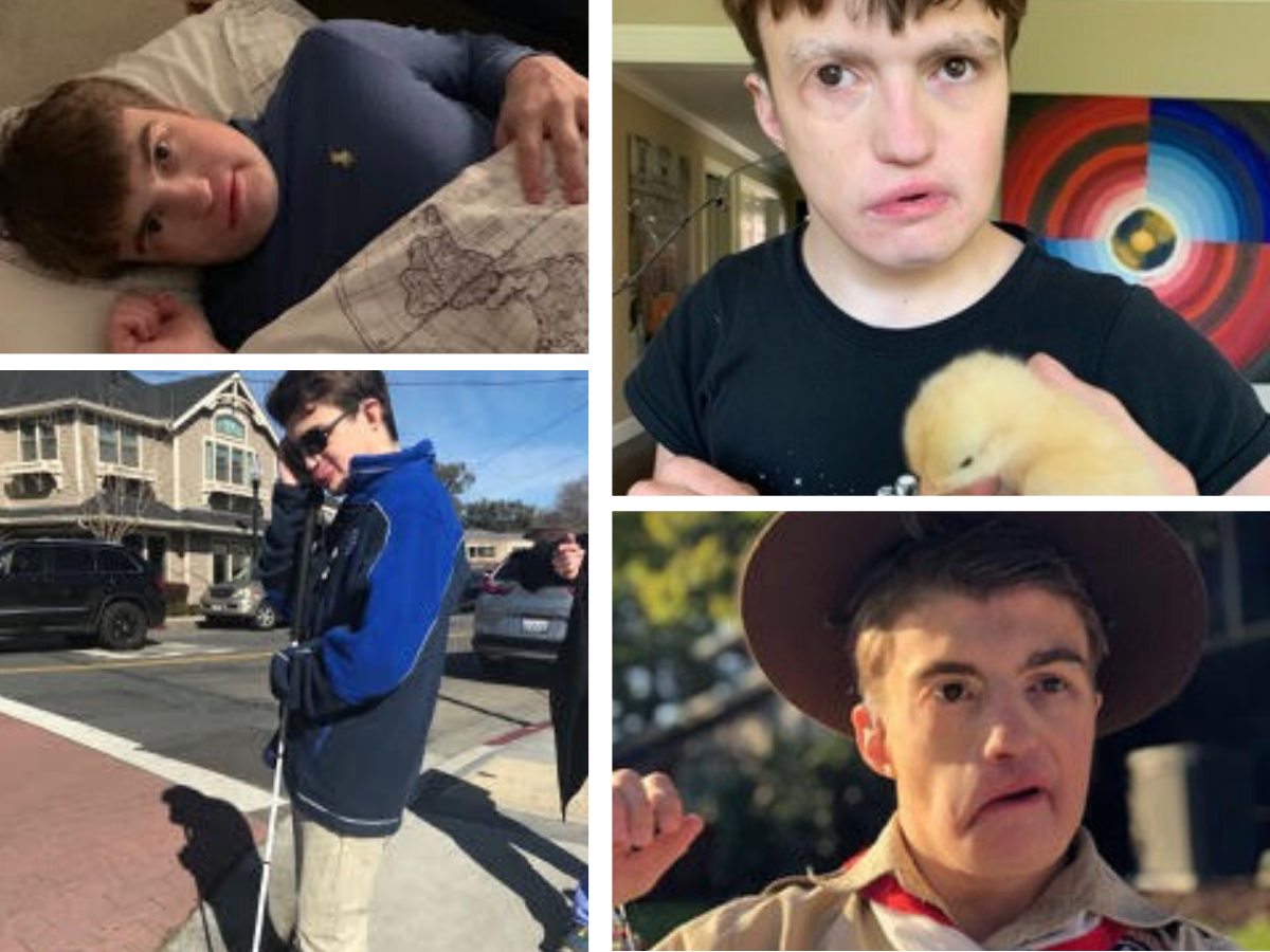 A collage of Tyler walking, holding a chick and smiling.
